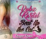 Vybz_Kartel_-_Beat_up_the_cat_-_Reggae_remix_by_TG_Mad.jpg
