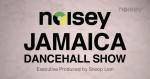 Noisey_Jamaica_Dancehall_show.JPG